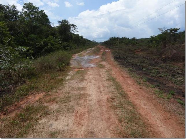 BR-319_Humaita_Manaus_Day_2_DSC05445