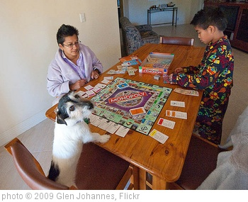 'Monopoly Top Dog' photo (c) 2009, Glen Johannes - license: http://creativecommons.org/licenses/by/2.0/