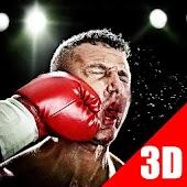 3D Boxing Hero Game