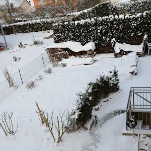 20141228_Schnee2.JPG