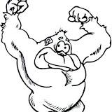 gorila-5.jpg