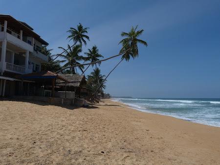 Plaja tropicala din Sri Lanka