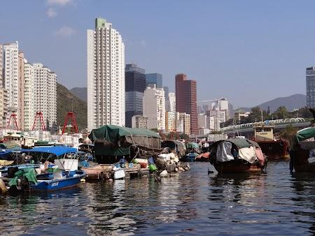 15. Vase pescaresti in Hong Kong.JPG