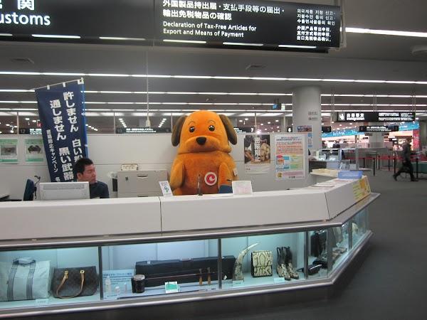60. Vama din aeroportul Nagoya.jpg