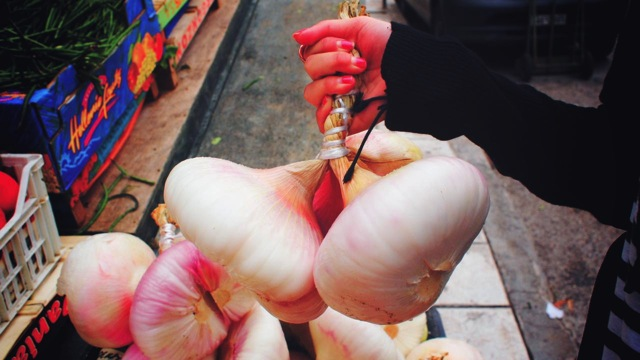 giant onions size