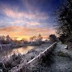 Fenor Bog Dawn-Noel Browne.jpg