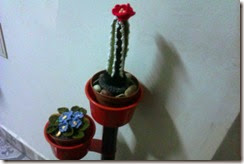 Crochet flower pots 1