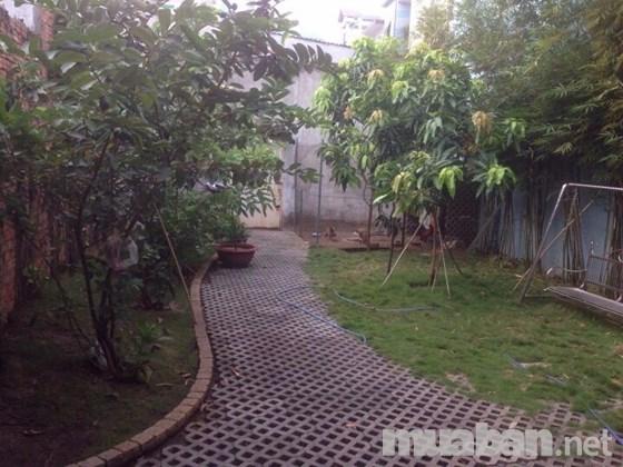 Bán Nhà Cấp 4 Hẻm Đường Lê Vĩnh Hòa Quận Tân Phú 05