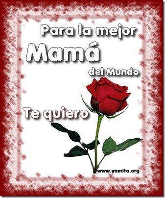 dia de las madres 14febrero net (1)