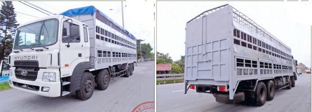 Hyundai HD320 xe chở lợn 15 tấn