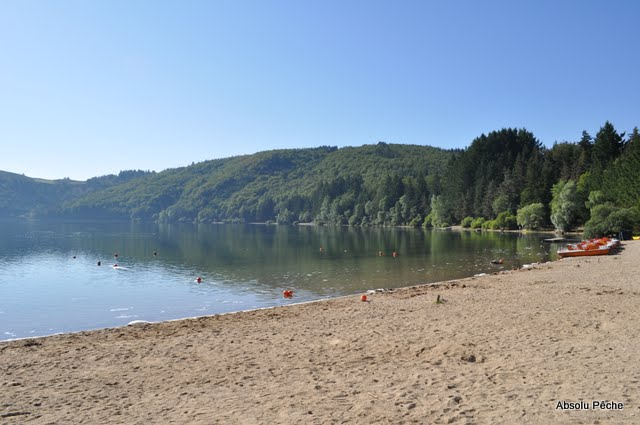 Lac d'Issarlès photo #486