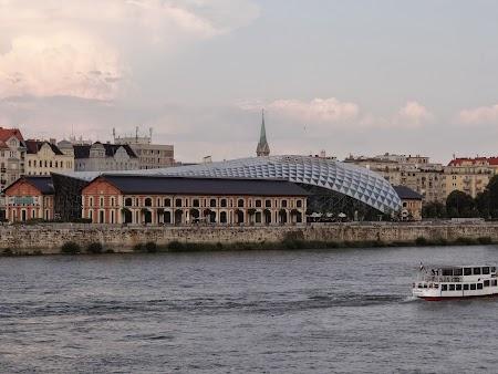 18. Balena din Budapesta.JPG