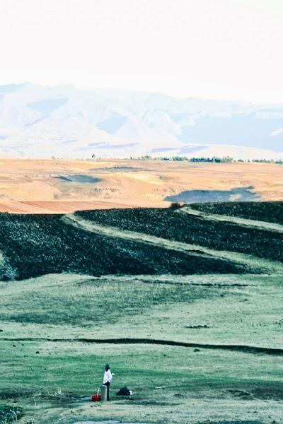 SouthernAfrica335.jpg