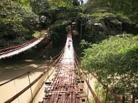 10. Jembatan gantung Loboc, Filipina