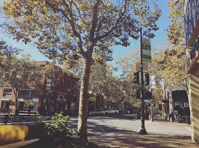 Palo Alto Walks