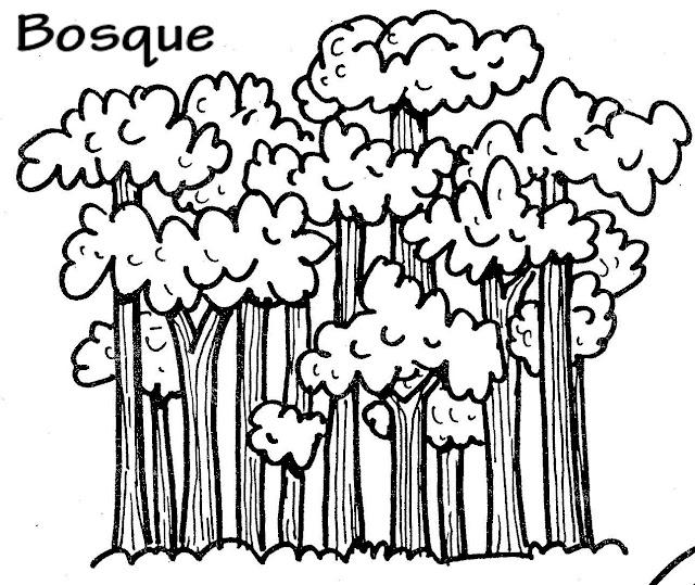 Bosques Dibujos Para Colorear