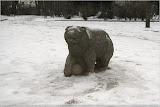 Eisbär?