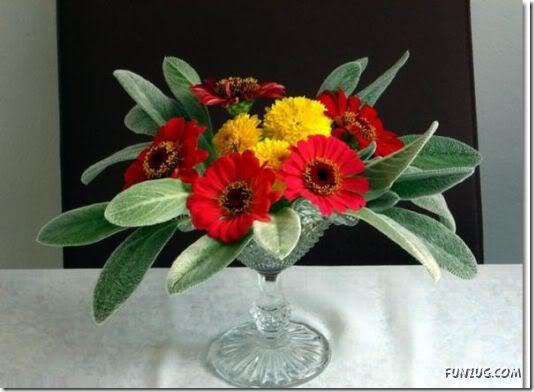 flor día del amor (4)