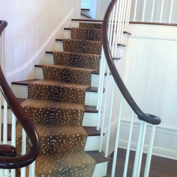 Animal Print Rug Runners For Stairs: Just Run With It