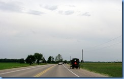 4993 On way to Kissing Bridge - Mennonite buggy