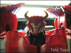 Cliffjumper (41)