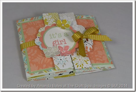 Tag Concertina Card, Baby, Mia Ruby, Amanda Bates, The Craft Spa , Closed (1)