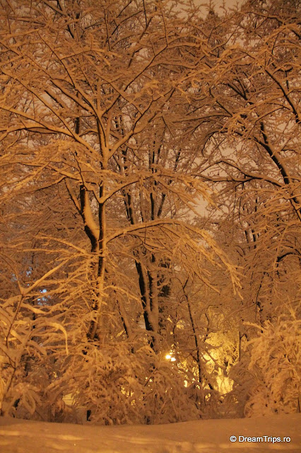 Noapte_de_iarna_1985.JPG
