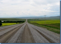 1178 Alberta - gravel roads between Head-Smashed-In Buffalo Jump Interpretive Centre and Pincher Creek - canola field   mountains ahead