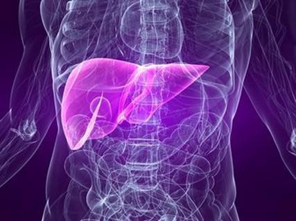 Liver Care Info