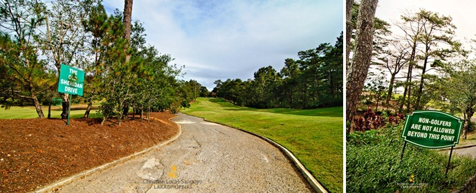 The Old Sheridan Drive at Camp John Hay