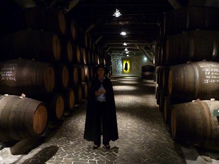Ghida de la crama de vin Porto Sandeman