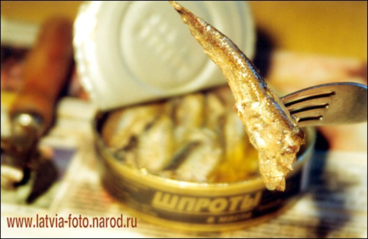foto.tod.sprats.big