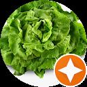 Image Google de Une salade