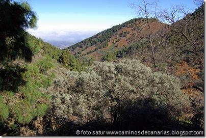 3350 Cueva Grande-Llanos Pez