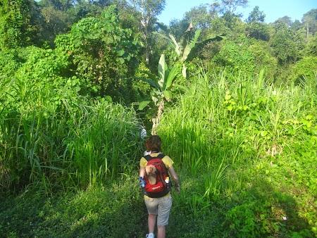 03. Start drum prin jungla.JPG