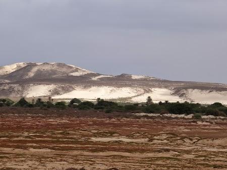 23. Dealuri cu nisip.JPG