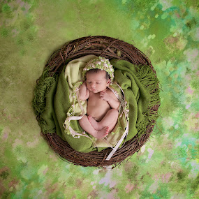 by Amy Johnson Emory - Babies & Children Babies