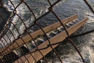 堤体中央部の魚道(下流側)を望む