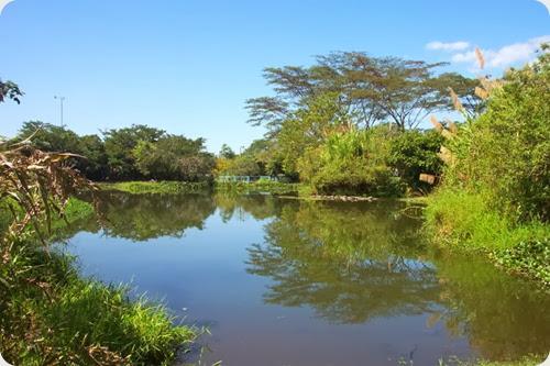 inbioparque costa rica lago