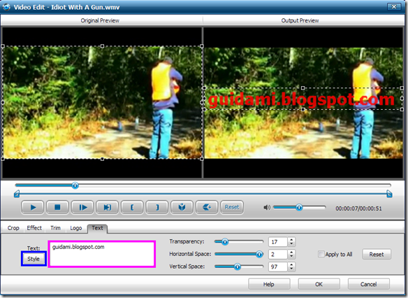 iWisoft Free Video Converter Video Edit Text