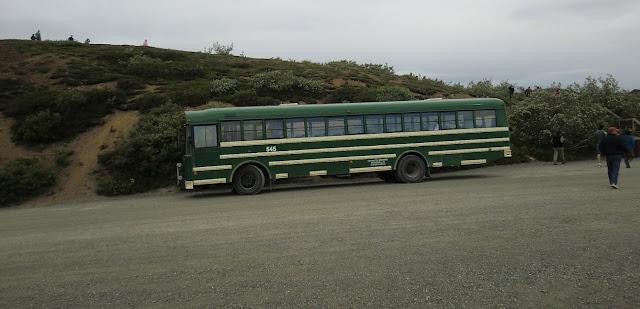 CIMG1984.JPG