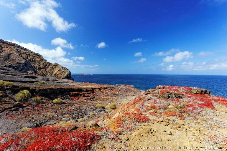 Colours of Punta Pitt Galapagos San Cristobal