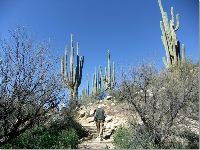 Ed hiking 3-6-2012 10-56-59 AM 3616x2712
