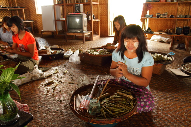 Burmese Cigar Making Factory in Inle Lake, Burma