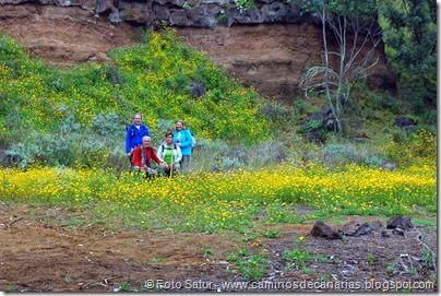 7937 Circular a Firgas R3-Llano de la Majada