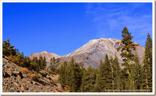 140118_MtShasta_afternoon3