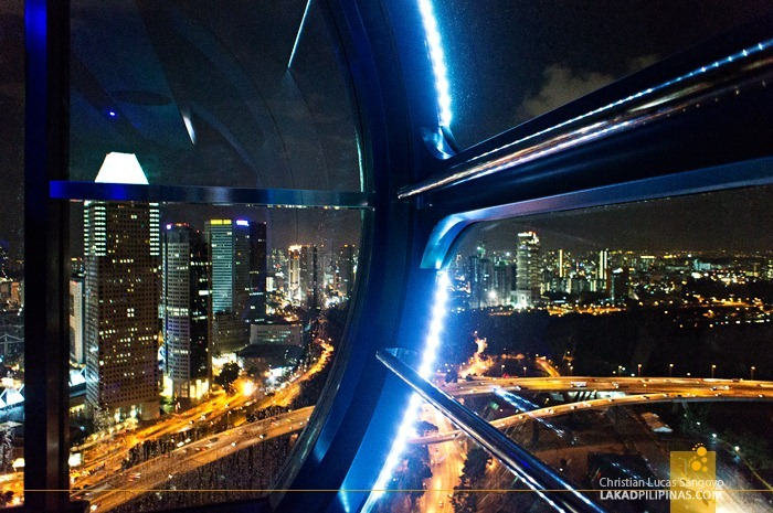 The City from the Singapore Flyer