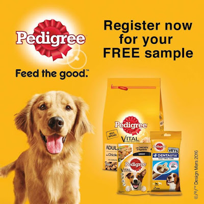Want to get your paws on some FREE Pedigree samples delivered straight