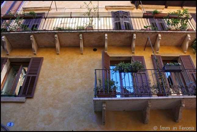 Windows and Doorways of Verona (5)