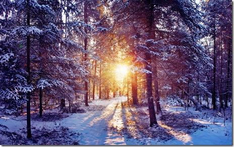 peisaje de iarna-wallpaper